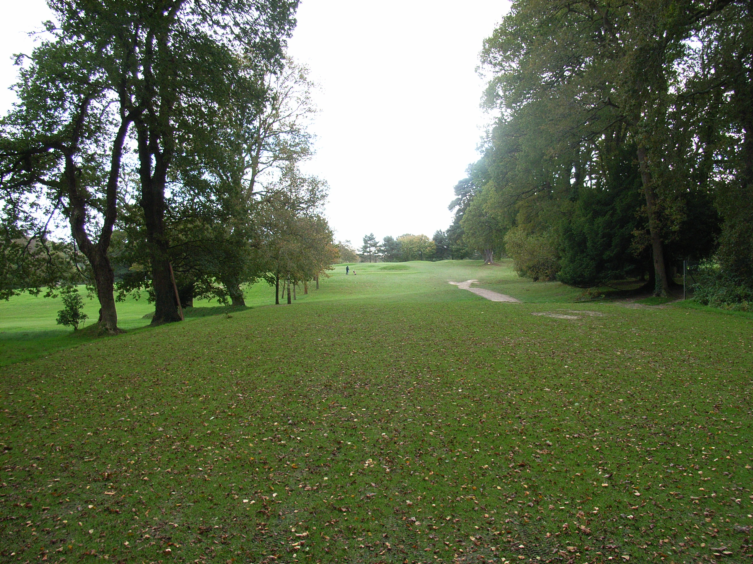 5th-tee-to-green